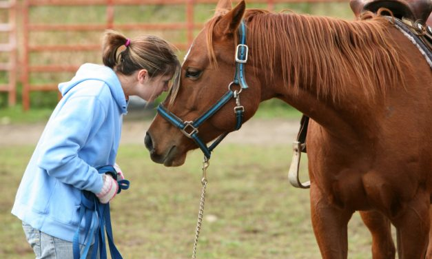 Gas Pipeline Woes Shut Down Therapeutic Riding Program