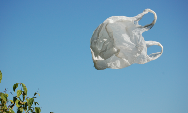 Orange County Electeds: Skip Straws and the Styrofoam