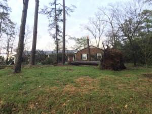 A tree nearly hit this house west of MLK and Umstead. Photo via Mark Schoeman.