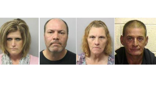Chatham County Authorities Bust Multiple Meth Labs ...