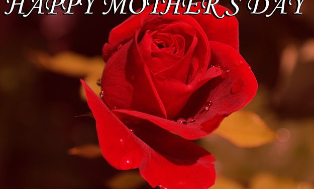 Mother's Day Mom-isms