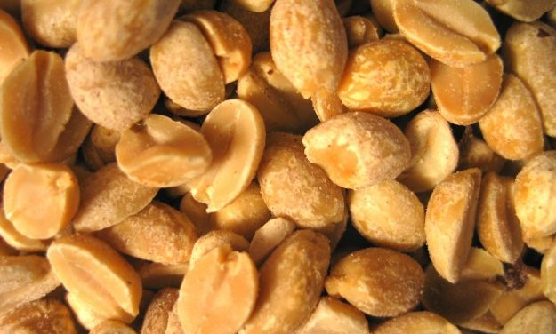 UNC Researchers Attempt to Tackle Peanut Allergy