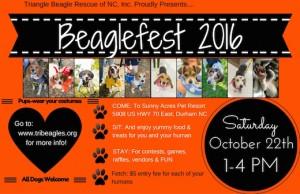 beaglefest 206