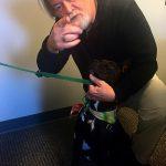Adopt A Pet: Dori