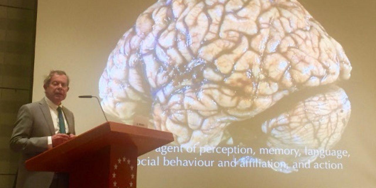 UNC Neurologist Plans Lecture for Brain Awareness Week