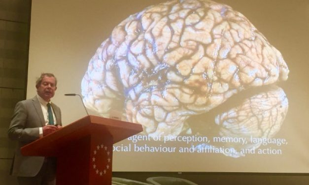 UNC Neurologist Plans Lecture for Brain Awareness Week