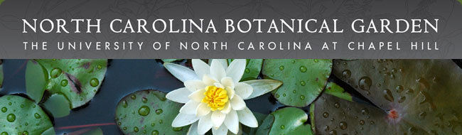 NC Botanical Garden   Designing With Native Plants: A Naturalistic Approach    Chapelboro.com
